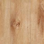 Sierra Nevada Oak 916
